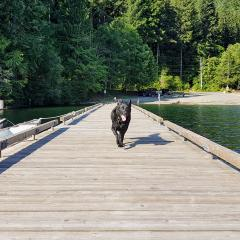 Comox Lake near Cumberland #hotdog